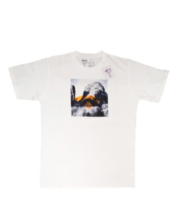 Stussy Deluxe White SX Silhouette Climb Tee Limited Edition 4014016